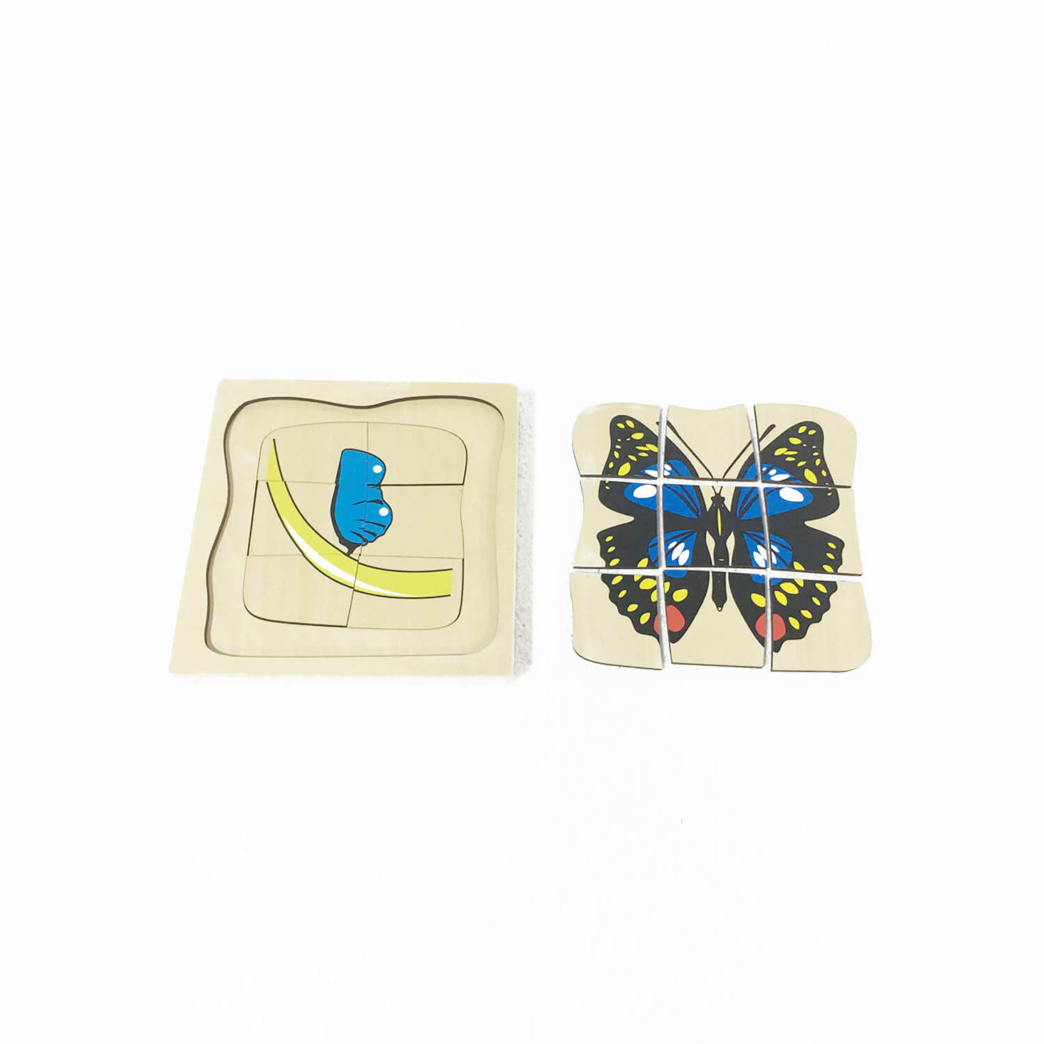 Animal Puzzle: Life Cycle Of Butterfly(5 Layers)